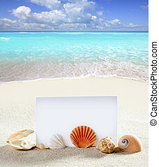 beach vacation sand pearl shells snail blank paper - beach...