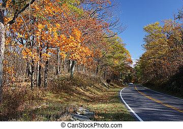 Shenandoah National park at the fall