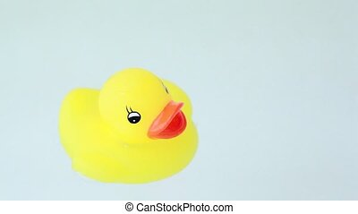 Closeup of toy duckling with lights flashes floats water -...