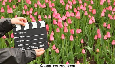 Hands boy claps clapperboard on field with tulips