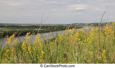 Riverbank landscape - Oka river, Ryazan area, Russia Dolly...