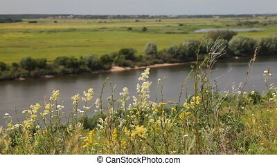 Riverbank landscape - Oka river, Ryazan area, Russia