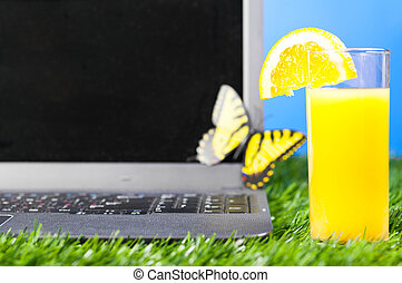 laptop outdoors - modern laptop with orange juice on grass...
