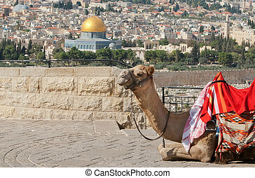 Jerusalem - View over the Temple Mound overlooking the Dome...
