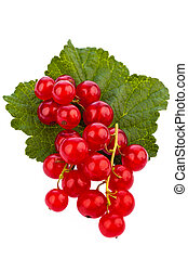 Red currant - red currant - Red Currants Currant lie on a...