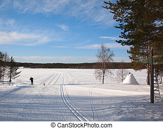 Cross-country tracks in Lapland - Cross-country skiing in a...