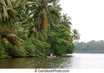 Fisherman on river surrounded with jungle - Fisherman in...