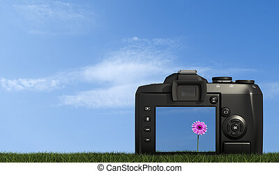 digital camera on grass against blue sky - back view of...