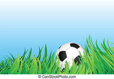soccer ball on grass field - soccer ball or football on...