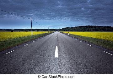 Asphalt road in rape field