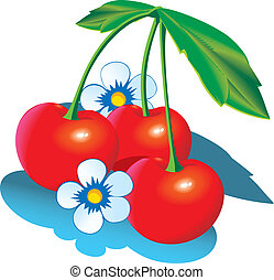 Cherry - Cherry with green leaves Vector illustration on a...