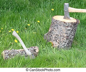 Splitting firewood - Spruce log with a wooden splitting maul...