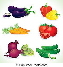 Vector Vechetables - Ripe Vegetables, set of detailed vector...
