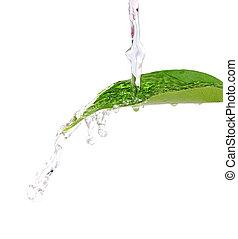 Flowing water on fresh green leaf .