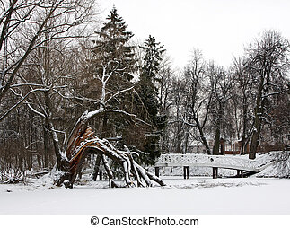 Winter landscape with bridge and broken tree