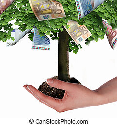 Money Tree with cuts on his hand of man a symbol of...