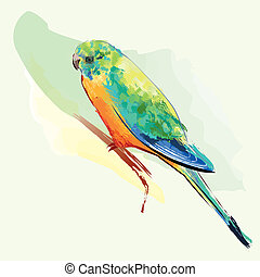 Parakeet Bird With Colorful Feathers sitting on a twig,...