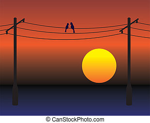 Birds on wires over sunset sky - Birds date on electrical...