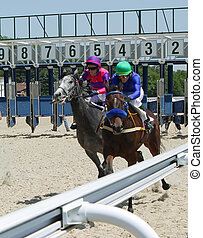 Horse racing - The race for the prize of the...