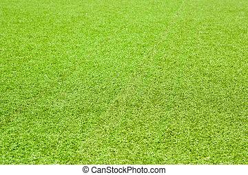 2860 Playground(64).jpg - Playground covered with grass,...