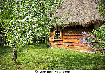 Rural scene with flowered trees and wooden cottage