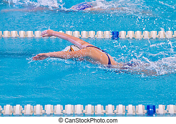 swimmer - woman swimming during a competition