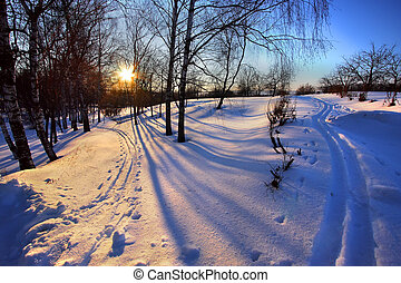 Winter park at sunset, Boldino national park