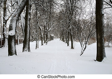 After snowstorm
