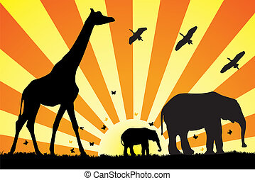 giraffe and elephants in africa