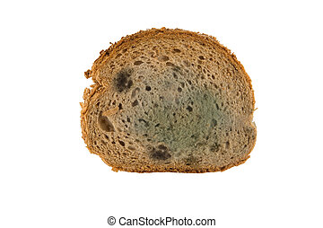 slice of moldy bread isolated on white background