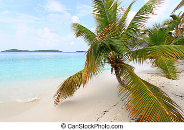Beautiful Solomon Bay (USVI)