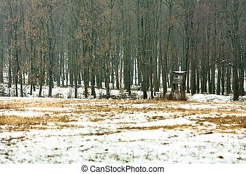 wildlife watching hut in winter forest