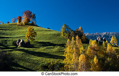 Autumn landscape in an alpine village (Romania)