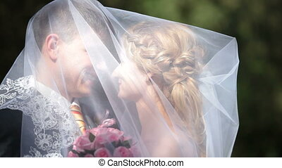 under veil - groom kisses the bride having covered under a...