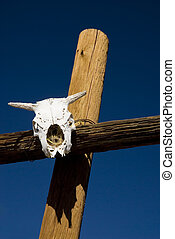 Bleached Cow Skull - A bleached cow skull on posts in the...
