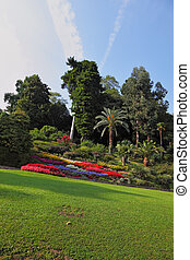 Wonderful flowerbeds in the park