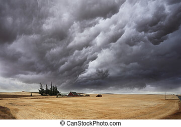 The thundercloud on fields - Huge thundercloud on fields of...