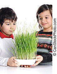 Two boys with green grass in hands