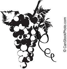 Raisins, feuilles, vignes