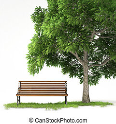 isolated bench under tree - bench under a tree isolated on...