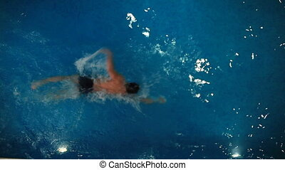 Swimmer in pool - Sporty guy swimming in water