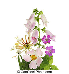 Wild flower arrangement - Arrangement of wild hedgerow...
