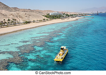 Red sea coast and coral reef - Coral reef in the Gulf of...