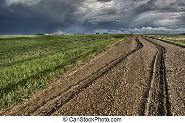 Mud Tire Tracks after a storm in the Canadian Prairies