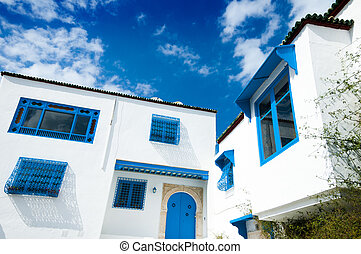 Tunisian Architecture - Traditional Tunisian architecture...