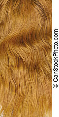 Texture. Female red hair for your design
