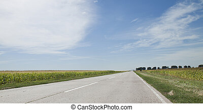 The road, field, harvest corn - landscape. The road, field,...