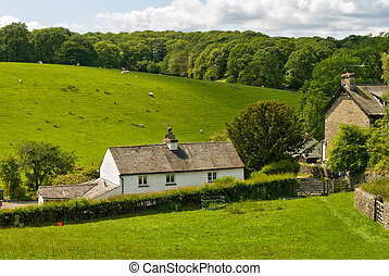 Whitewashed cottage in rural setting. - A whitewashed...