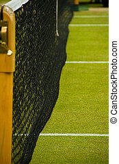 Wimbledon tennis court - Detail of a lawn tennis court