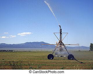 perno, irrigazione